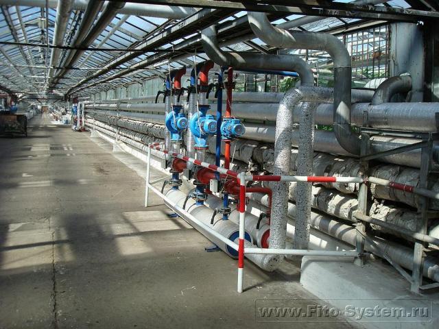 Проектирование промышленных теплиц и внутренних систем