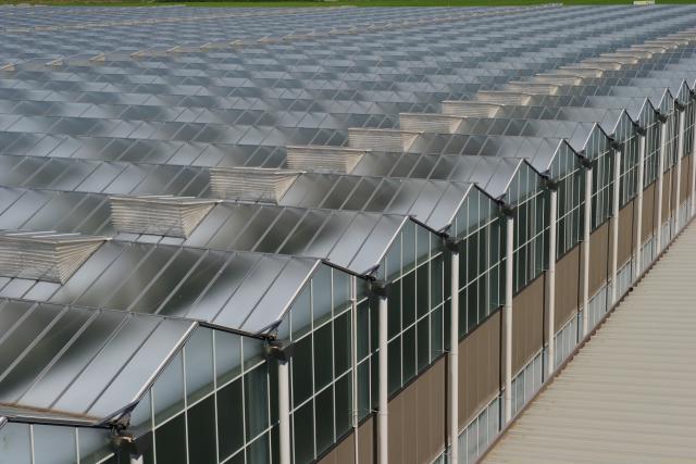 Теплицы 5-го поколения Ультра Клима (Ultra Clima)