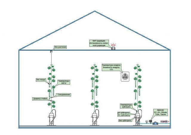 Системы контроля за параметрами в теплице